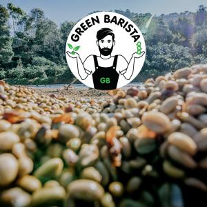 green-barista-brand-card
