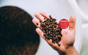 Primo Coffee Banner